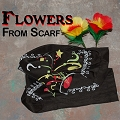 Flowers From Scarf