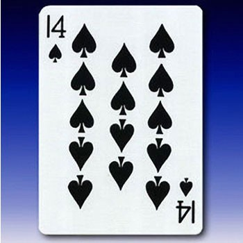 14 of Spades Card
