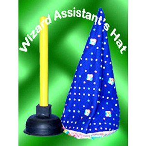 Wizard Assistant Hat