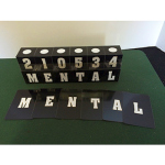 Astor Mental Cubes - PREOWNED