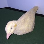 Latex Dove - PREOWNED