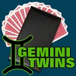 Gemini Twins + ONLINE VIDEO