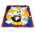 Silk- Rabbit 18 Inch