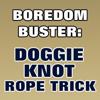 BOREDOM BUSTER: Doggie Knot Rope Trick