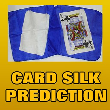 Card Silk Prediction + ONLINE VIDEO + MT GIMMICK