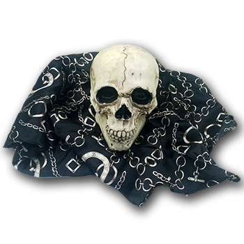 DISCONTINUED Floating Skull
