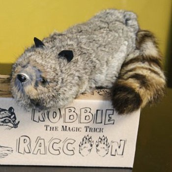 DISCONTINUED Robbie Raccoon Puppet